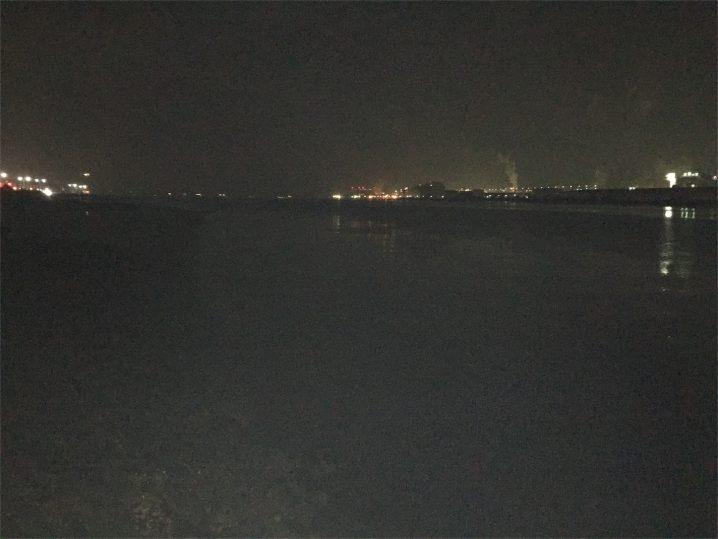 20151129多摩川シーバス夜釣り