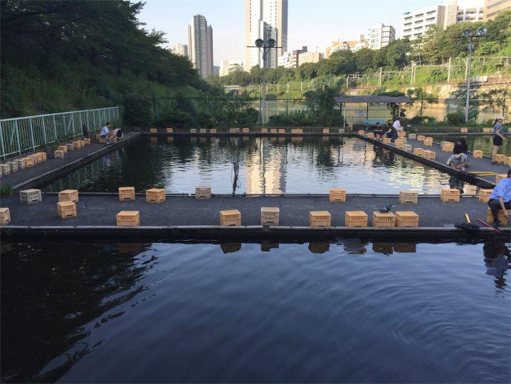 201607市ヶ谷釣り堀