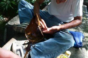 玉川上水の釣り人