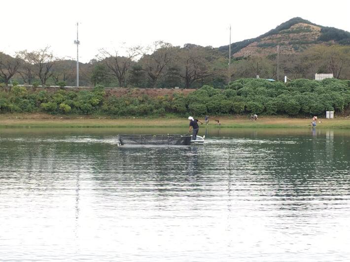 加賀フィッシング1号池放流