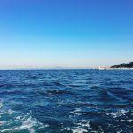 金田湾にボートカワハギを釣りにいった話