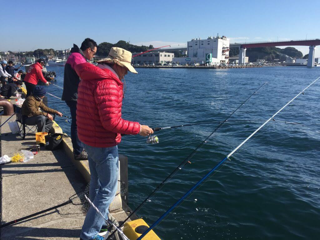 俺釣り、花暮岸壁釣り風景
