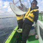 5月・6月に船釣りで釣れる魚と釣り方まとめ|アジのサビキ釣り・ヒラメ泳がせ釣り編