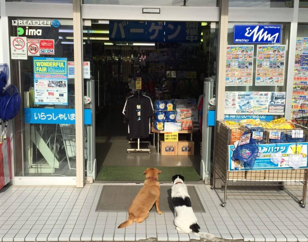 上州屋横須賀佐島店