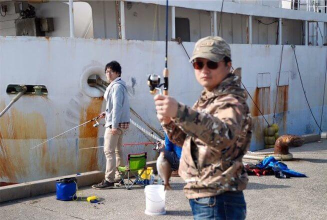 ウミタナゴを釣ったコムコム