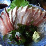 はじめて鯖を刺身で食べたときの記憶(土佐清水市-清水さば)