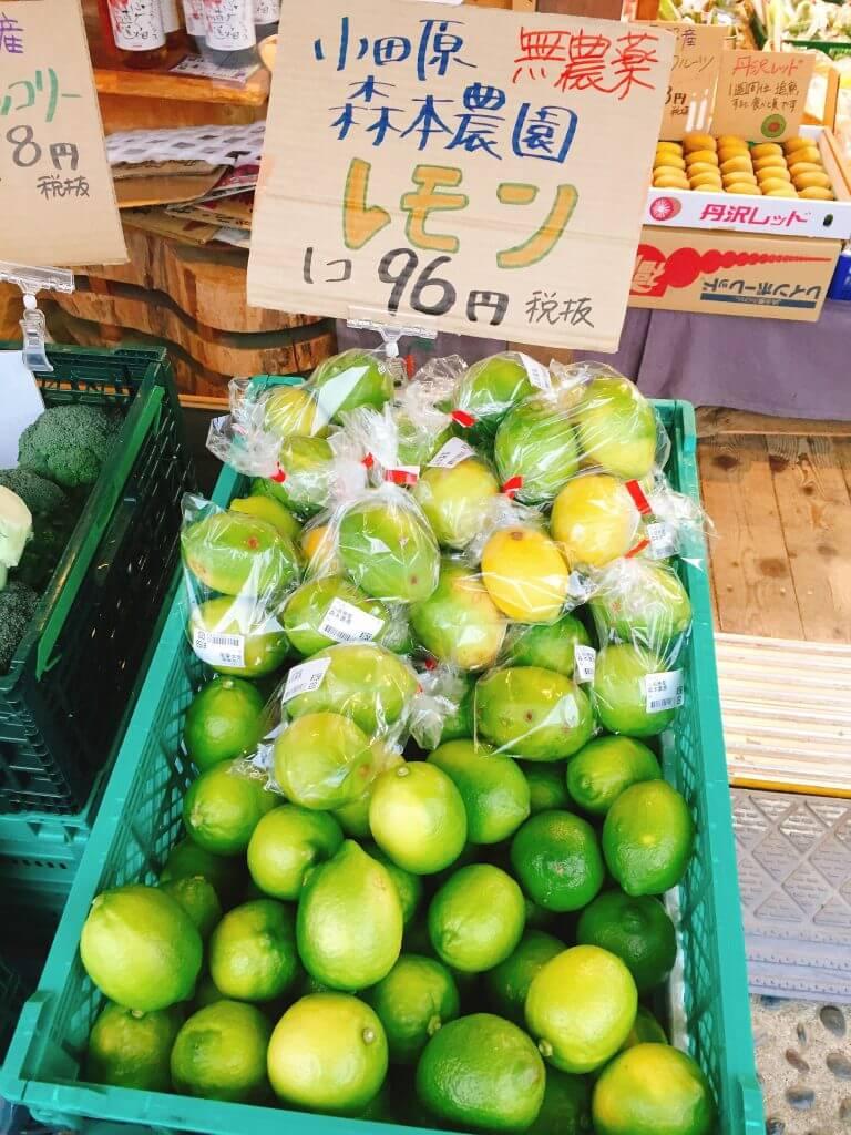 小田原のレモン