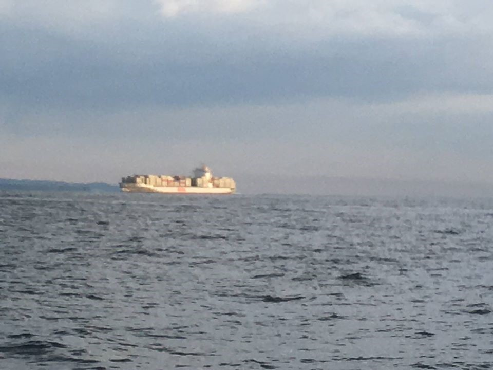 東京湾のコンテナ船