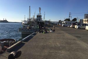 三崎港花暮岸壁 釣り 俺たちの釣り公式戦