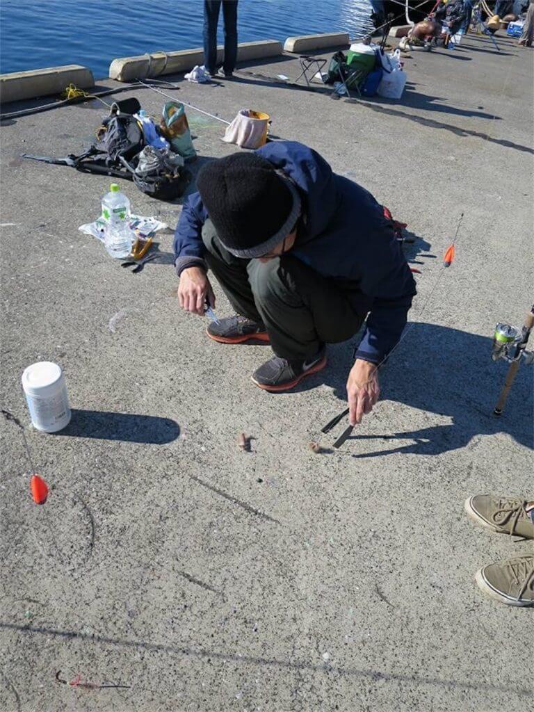 三崎港花暮岸壁 釣り 俺たちの釣り公式戦 海毛虫