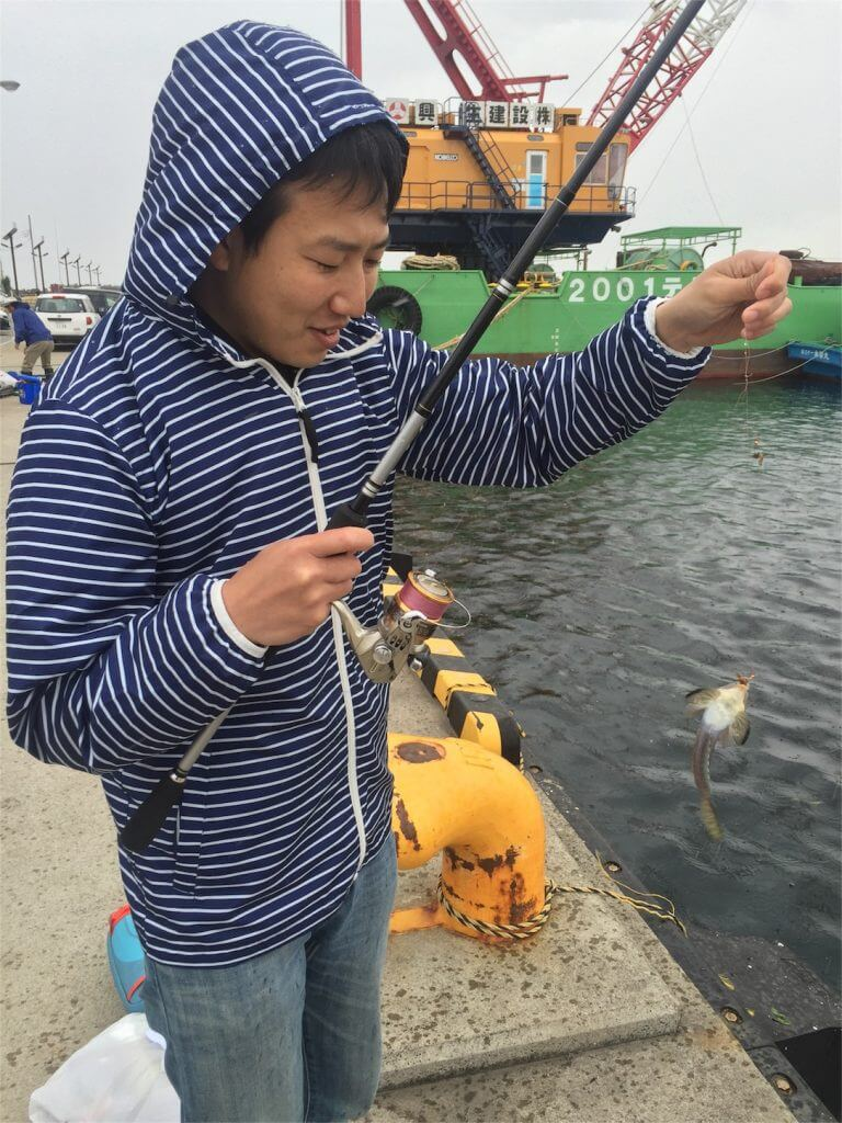 城ヶ島 釣り メゴチ