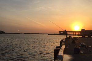 三崎港花暮岸壁 釣り メバリング 夕日
