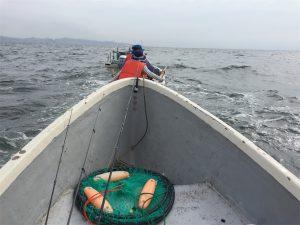 三浦半島 金田湾 ボート釣り