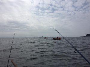 三浦半島 金田湾 ボート釣り 泳がせ釣り