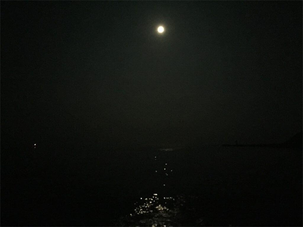 城ヶ島 黒島岸壁 釣り