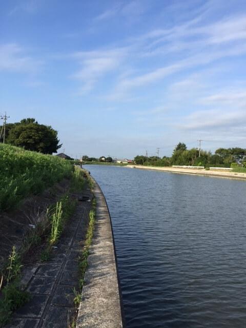 ブラックバス釣りDQN 横利根と印旛水