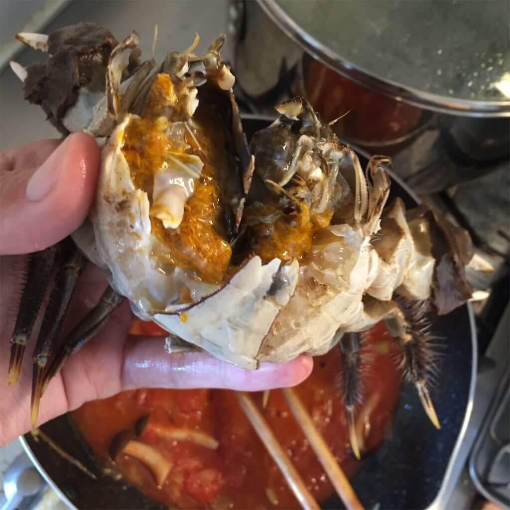 神奈川 モクズガニ釣り 調理 トマトクリームパスタ