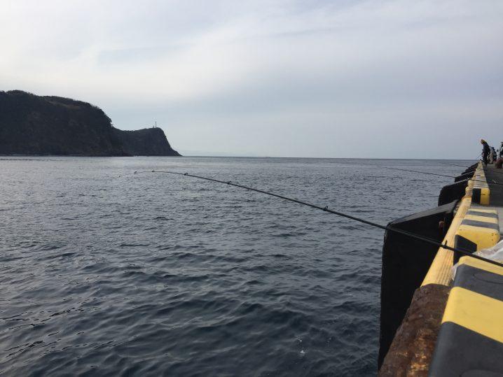 岡田港で堤防釣り