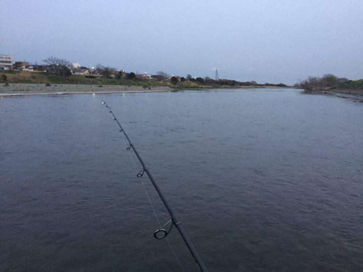 多摩川中流域でマルタ釣り