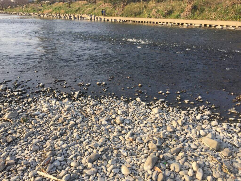 多摩川中流域の瀬