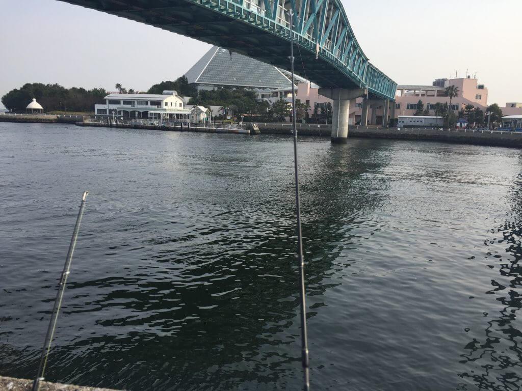 八景島シーパラダイスマリンゲート付近で釣り