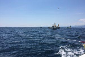 アジ釣り船団