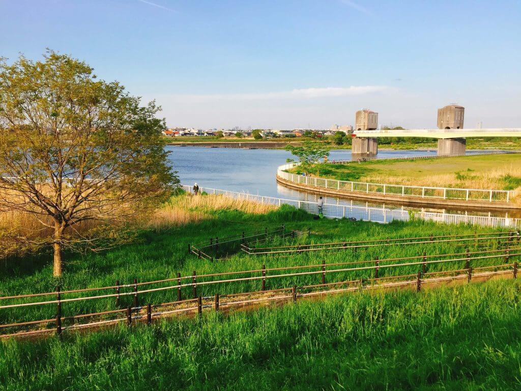 多摩川の二ヶ領用水