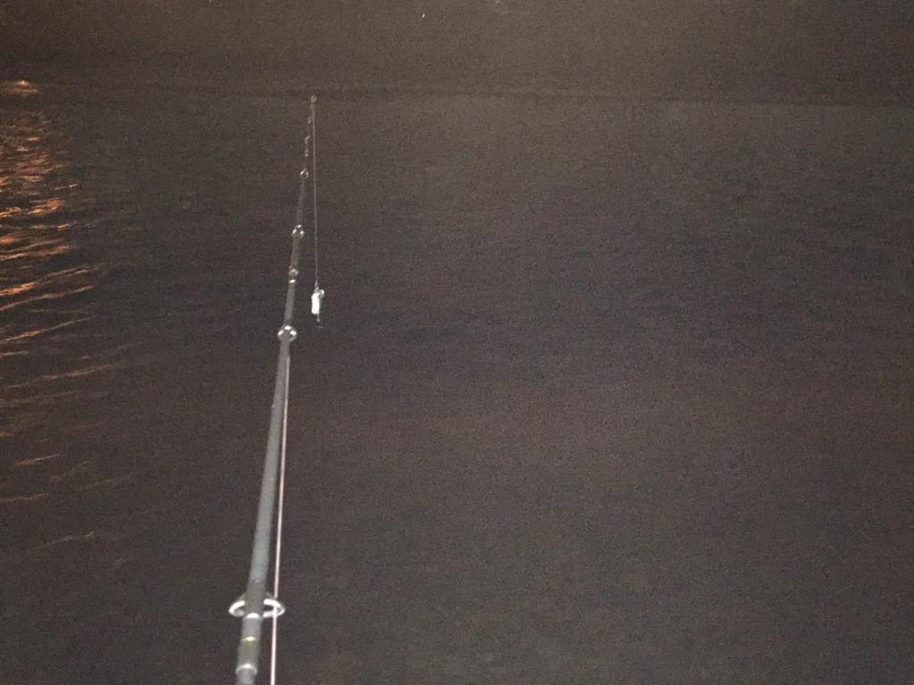 神奈川でナマズ釣り