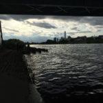 多摩川テナガエビ釣り、多摩川大橋編 2017年5月