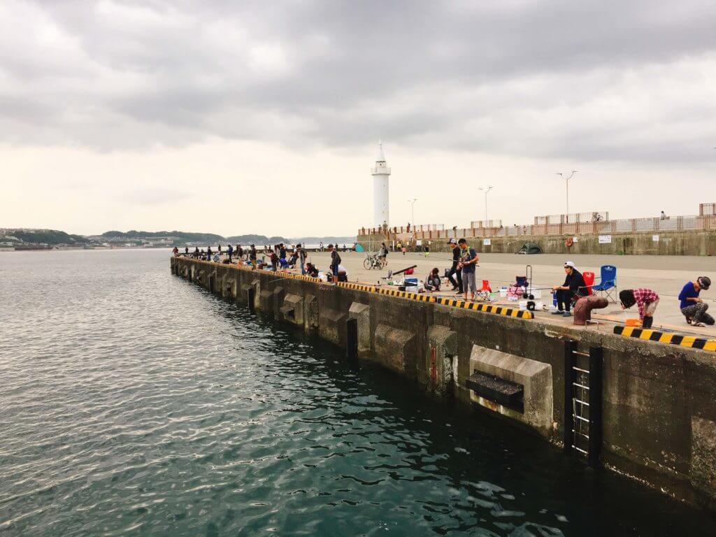 江の島 堤防 釣り