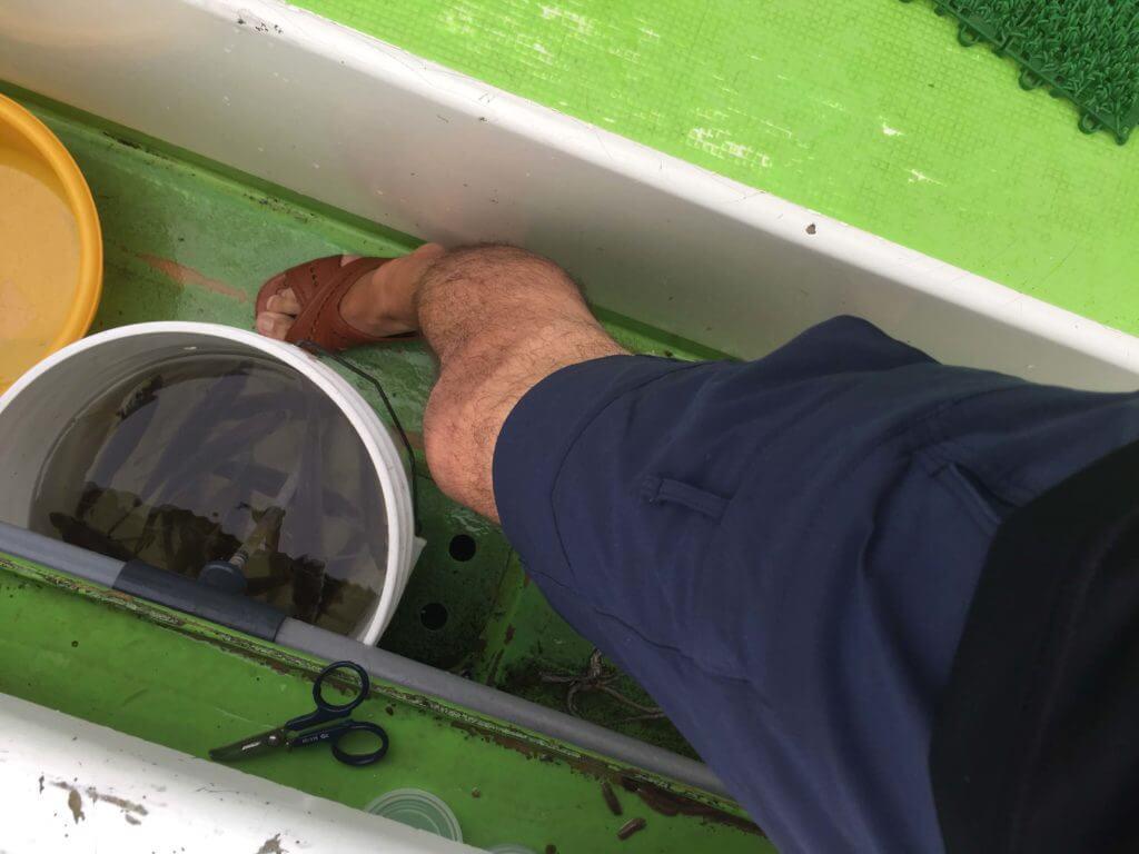 便所サンダルで釣り船