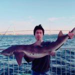 【釣り方】岸から狙う!東京湾のベイシャーク(ドチザメ)フィッシング