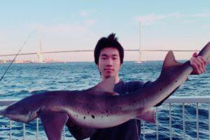 東京湾ドチザメ釣り