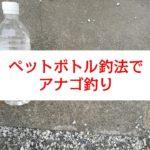 【なかけんの『食べ釣り』】ペットボトル釣法でお台場アナゴ釣り
