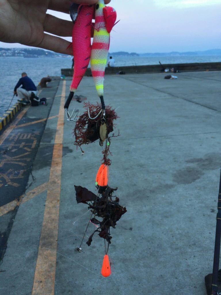 藻&大量の釣り糸とジェット天秤とノーマル天秤 釣れた