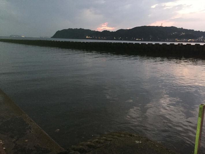 田越川河口に到着