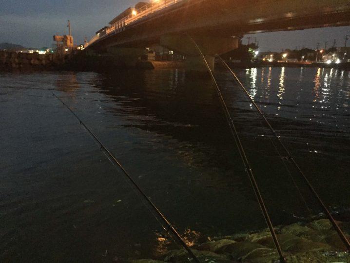 田越川河口で釣り