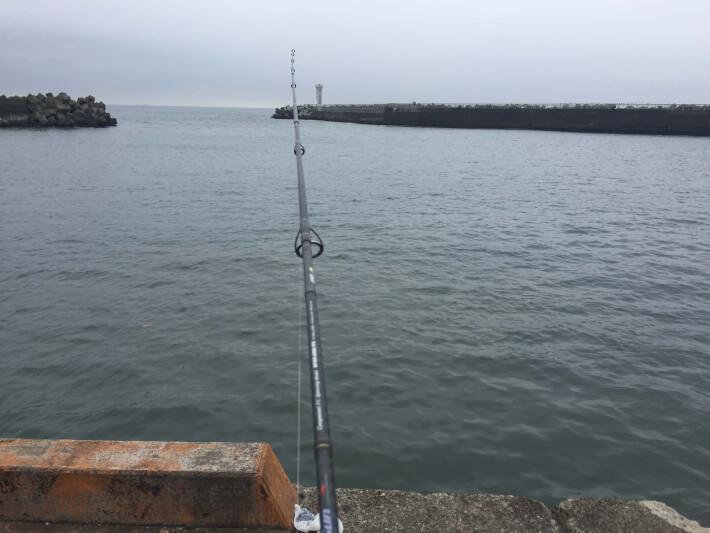 大磯港で釣り