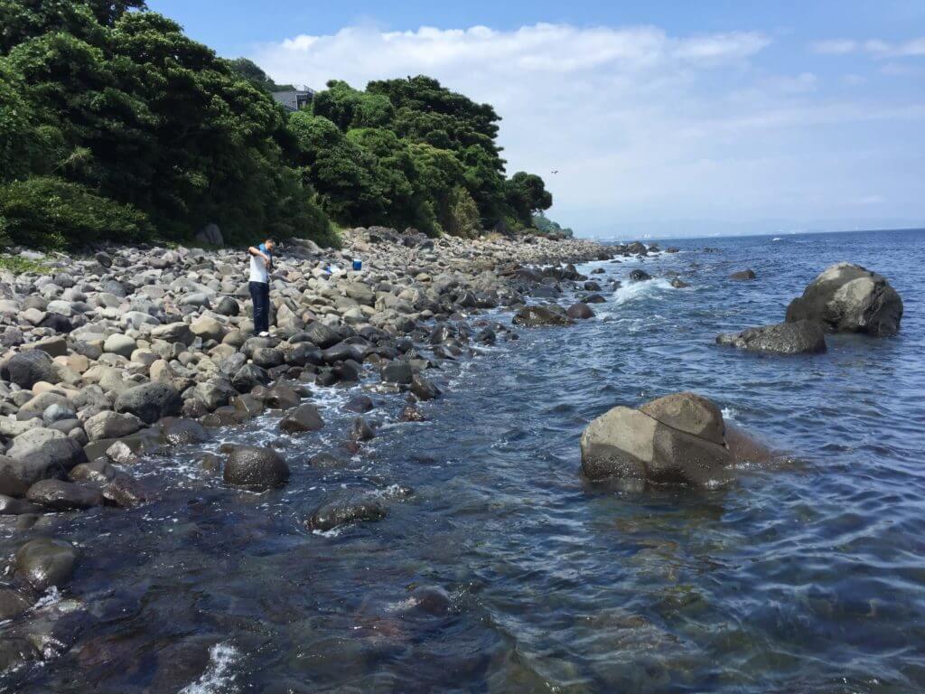 江之浦漁港で釣り
