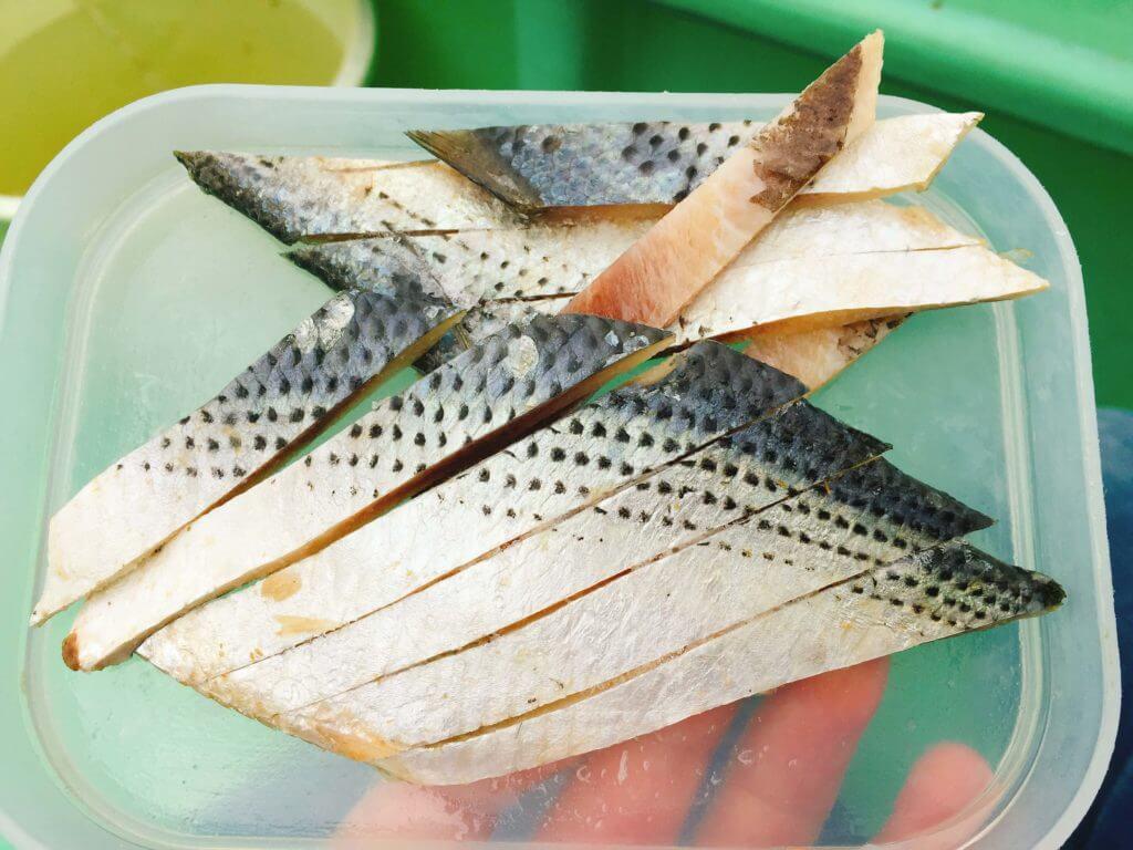 タチウオ釣り サンマの切り身