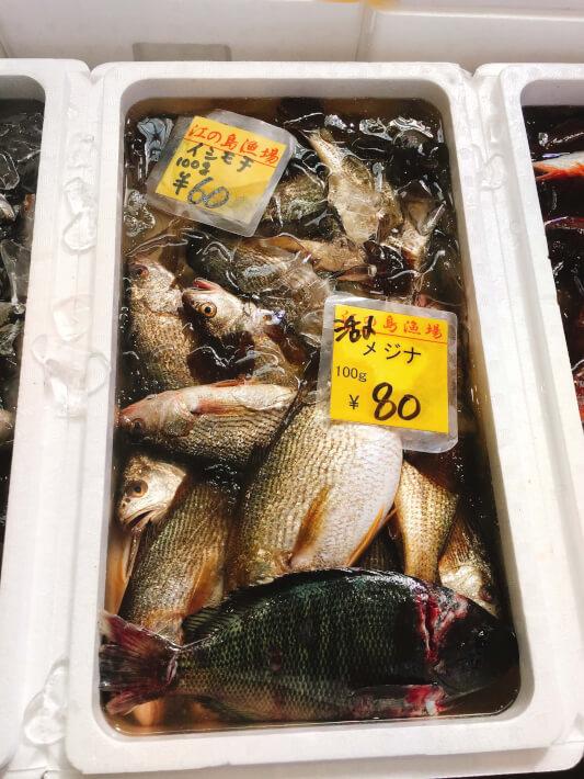 片瀬漁港直売所のメジナとイシモチ