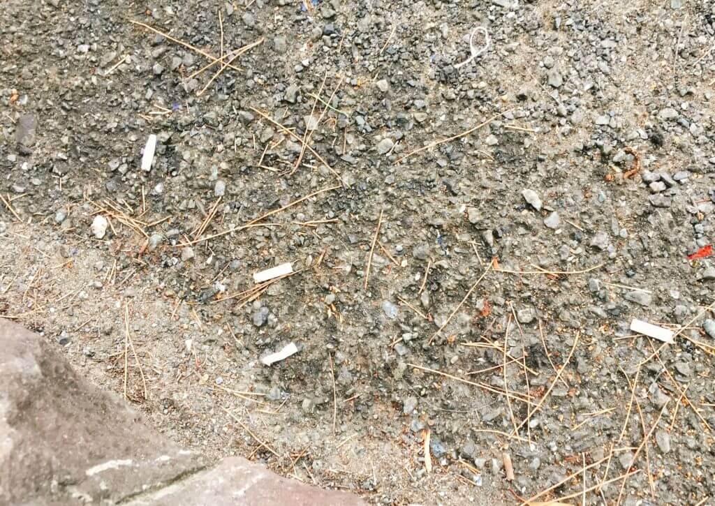 釣り場のゴミ タバコ