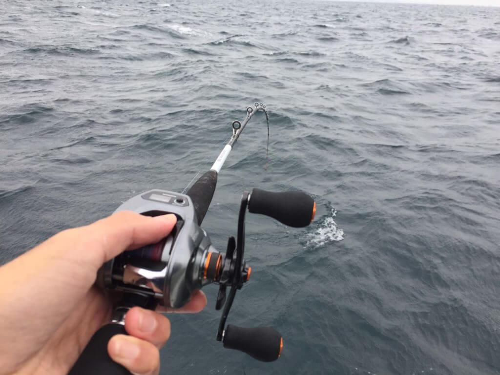 アマダイ釣りの誘い