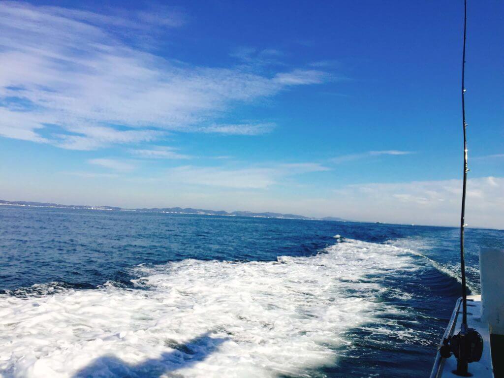 相模湾でアマダイ釣り