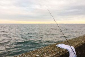 福浦岸壁でカレイ釣り