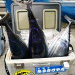 夏はやっぱり大物釣り!相模湾キハダマグロ・カツオ釣りの回想【なかけんの食べ釣り】