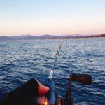 【初心者にオススメ】相模湾のLT五目(ライトウィリー)釣りにチャレンジしてみよう!(タックル・釣り解説)