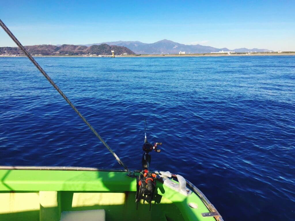 相模湾で泳がせ釣り