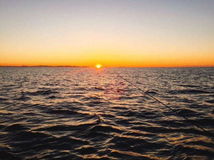 相模湾船釣り 日の出