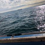 南六郷ミナミ釣り船さんからカレイ五目釣りへ!【工藤麻里さんからの寄稿】